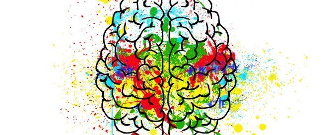 Neurita psicología y neuromarketing