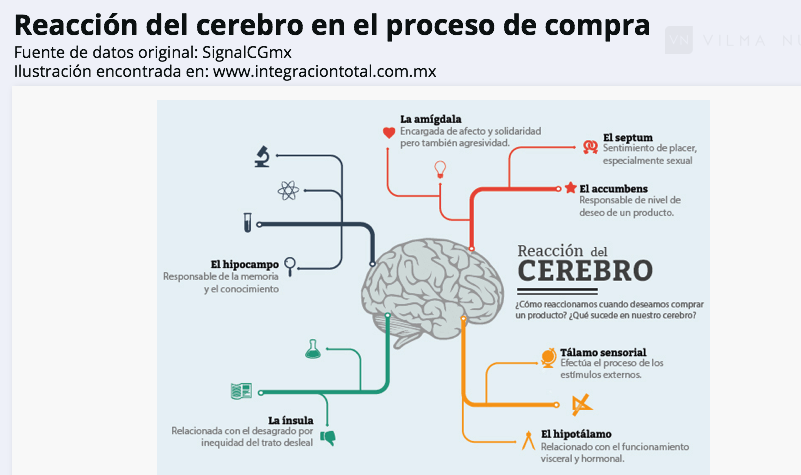 Neurita, psicología y neuromarketing